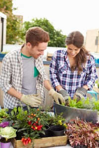 people and container gardening - lawn & garden page